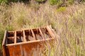 Chest of drawers abandoned man invading nature brown wooden with no lying in a meadow wild purple grasses Stock Photo