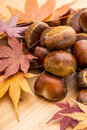 Chestnut and maple leave over the wooden background Royalty Free Stock Images
