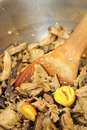 Chestnut and mutton ingredients Royalty Free Stock Images