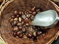Chestnuts in the basket bailer in market place food background Royalty Free Stock Photo