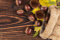 Chestnuts in burlap bag from above. Royalty Free Stock Photo