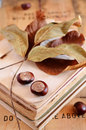 Chestnuts on vintage book pile still life with books and fall leaves rusted wooden background Stock Photography