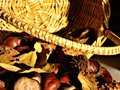 Chestnuts and wicker basket. Close-up. Royalty Free Stock Photo