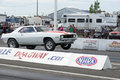 Chevrolet camaro napierville dragway july front side view of making a wheelie during nhra national open event Royalty Free Stock Photo