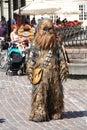 Chewbacca Royalty Free Stock Photo