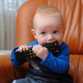 Chewing the TV remote control Stock Photography