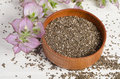 Chia seed healthy super food with flower Royalty Free Stock Photo