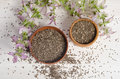 Chia seed healthy super food with flower over white Royalty Free Stock Photo