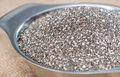 Chia seeds frais Photos stock