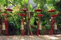 Chiang Mai buddhist temples - Wat Phan Tao Thailand Royalty Free Stock Photo