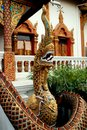 Chiang Mai, TH: Naga an Wat Lan Chang Stockbild