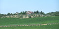 Chianti in tuscany scenery around gaiole near castle of brolio the region of central italy Stock Photography