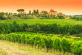 Chianti vineyard landscape with stone house in Tuscany Royalty Free Stock Photo