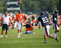 Chicago Bears training camp Royalty Free Stock Images