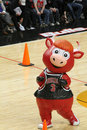 Chicago Bulls Inflatable Royalty Free Stock Photo