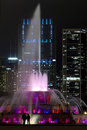 Chicago  Famous Fountain and Skiline Stock Photography