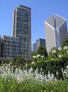 Chicago i stadens centrum milleniumpark Royaltyfri Bild