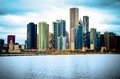 Chicago Illinois City Skyline Royalty Free Stock Image