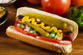 Chicago style hot dog with mustard pickle tomato relish and onion Royalty Free Stock Image