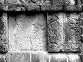 Chichen itza mayan glyphs jaguar on the walls at in yucatan mexico with eating human heart Royalty Free Stock Photos