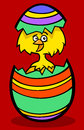 Chick in easter egg cartoon illustration Stock Image