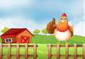 A chicken above a wooden fence at the farm illustration of Stock Photography