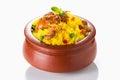 Chicken Biryani Royalty Free Stock Photo