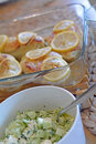 Chicken breast with lemon and pickle salad Royalty Free Stock Photo