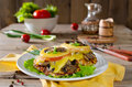 Chicken breast with mushrooms and cheese Royalty Free Stock Photo
