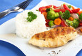 Chicken Breast with Rice and Vegetable Stock Photos
