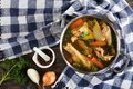 Chicken broth with pieces of meat Royalty Free Stock Photo