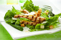 Chicken Caesar salad Royalty Free Stock Photo