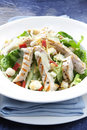 Chicken Caesar Salad Stock Image