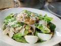 Chicken caesar salad served on a cafe table Stock Photography
