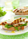 Chicken Caesar sandwich Royalty Free Stock Images