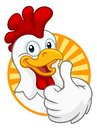 Chicken Cartoon Rooster Cockerel Character Royalty Free Stock Photo