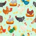 Chicken characters in different poses. Hen and rooster seamless pattern vector flat illustration. Cute and funny egg