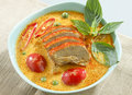 Chicken or duck curry Royalty Free Stock Images