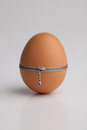 Chicken egg with zipper Royalty Free Stock Photo