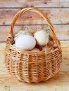 Chicken eggs in the basket food closeup Royalty Free Stock Images