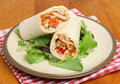 Chicken fajita wrap sandwich with lettuce leaves Royalty Free Stock Photos