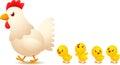 Chicken family Royalty Free Stock Photo