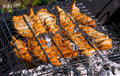 Chicken fillet fried on grill-grill on a Sunny summer day. Diet. The fight against excess weight. Royalty Free Stock Photo