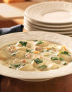 Chicken and gnocchi soup meal close up photo of at a Stock Photography