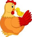 Chicken hen cartoon Royalty Free Stock Photo