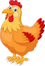 Chicken hen cute posing Royalty Free Stock Photo