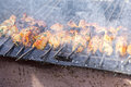 Chicken kebabs on barbecue Royalty Free Stock Photo
