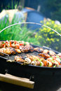 Chicken and lamb kebabs Royalty Free Stock Photo
