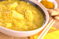 Chicken-Mango Curry Royalty Free Stock Photo