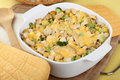 Chicken and Noodle Casserole Royalty Free Stock Photos